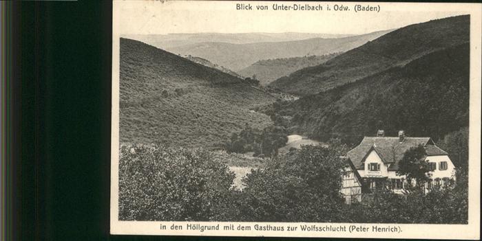 AK / Ansichtskarte Unter Dielbach Hoellgrund Gasthaus Wolfsschlucht /  /