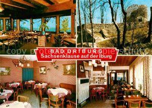 AK / Ansichtskarte Bad Driburg Cafe Restaurant Sachsenklause Ruine Kat. Bad Driburg