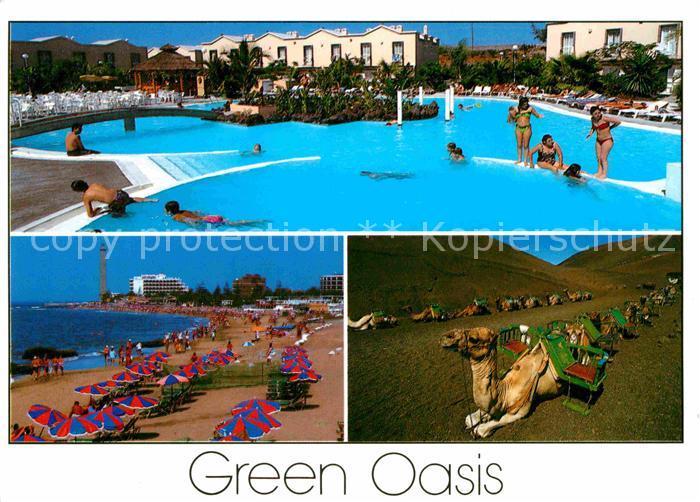 AK / Ansichtskarte Maspalomas Bungalows Green Oasis Swimming Pool Strand  Kamele Kat. Gran Canaria Spanien