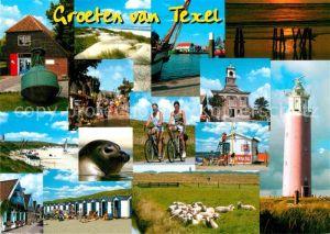 AK / Ansichtskarte Texel Strandhuetten Leuchtturm Seehund Schafherde Kat. Niederlande