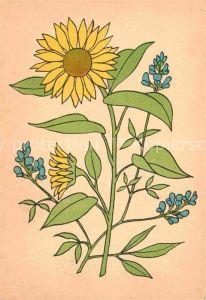 AK / Ansichtskarte Blumen Sonnenblume  Kat. Pflanzen
