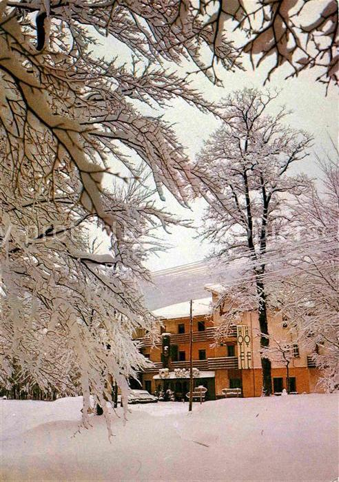 AK / Ansichtskarte Leiza Hotel Basa Kabi im Winter