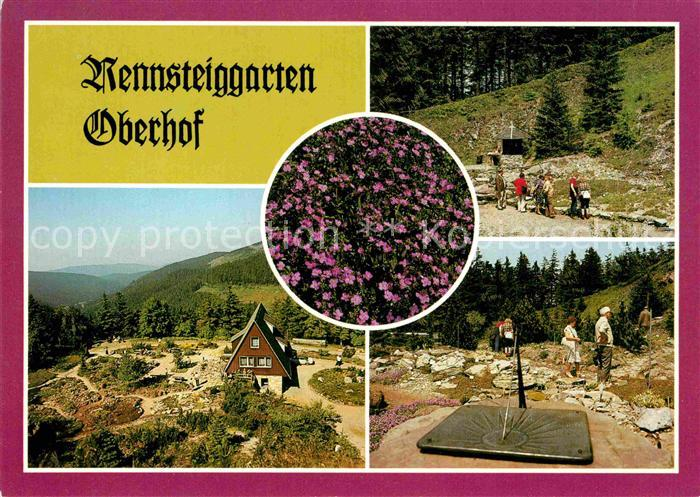 AK / Ansichtskarte Oberhof Thueringen Rennsteiggarten Gebirgsflora Wandern Berghaus Kat. Oberhof Thueringen