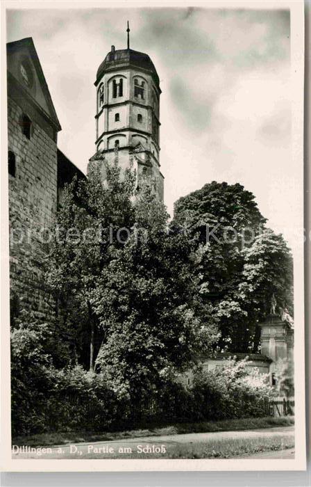 AK / Ansichtskarte Dillingen Donau Partie am Schloss Kat. Dillingen a.d.Donau