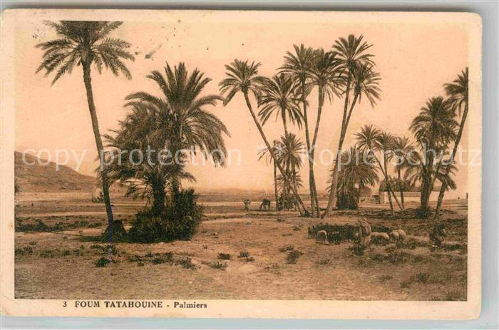 AK / Ansichtskarte Gabes Oase Kat. Tunesien