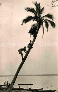 AK / Ansichtskarte Togo Cueillette des Noix de Caco au bord du Lac de Togo Kat. Togo