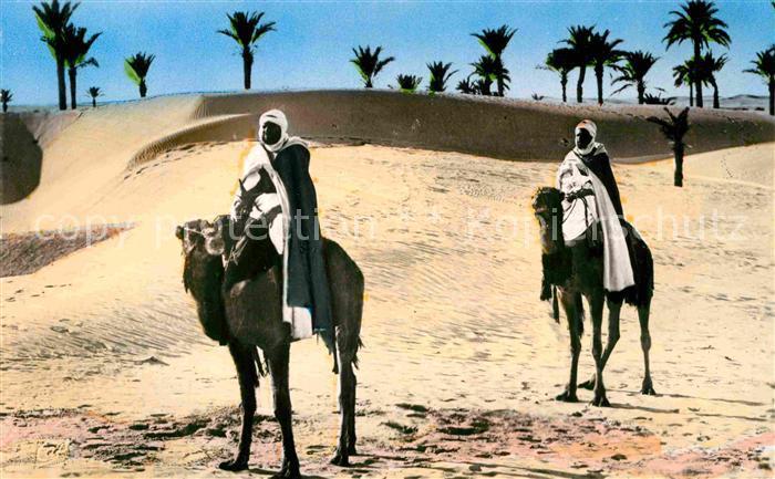 AK / Ansichtskarte Scenes et Types Nr. 1123 Paysage au Desert Kamele  Kat. Typen