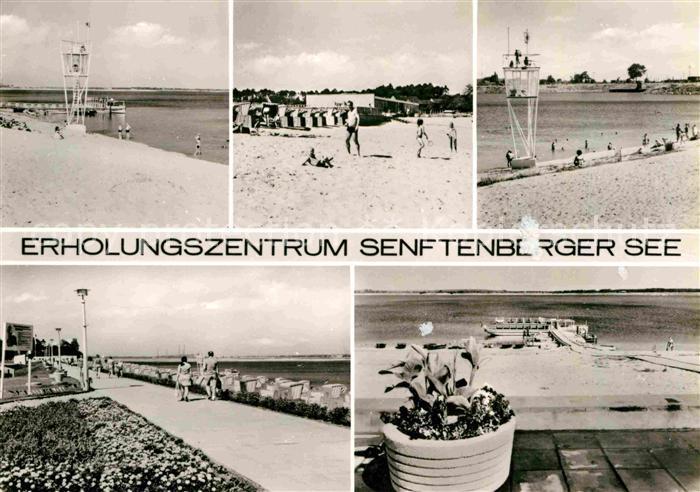 AK / Ansichtskarte Senftenberg Niederlausitz Erholungszentrum Senftenberger See Badestrand Promenade Kat. Senftenberg