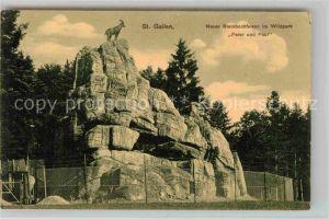 AK / Ansichtskarte St Gallen SG Neuer Steinbockfelsen Wildpark Peter und Paul Kat. St Gallen