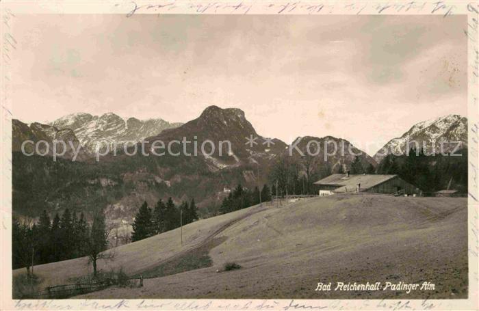 AK / Ansichtskarte Bad Reichenhall Padinger Alm Kat. Bad Reichenhall