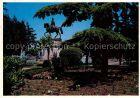 AK / Ansichtskarte Logrono Fuente del Gral Espartero Jardin Monumento Reiterstandbild Kat. Logrono