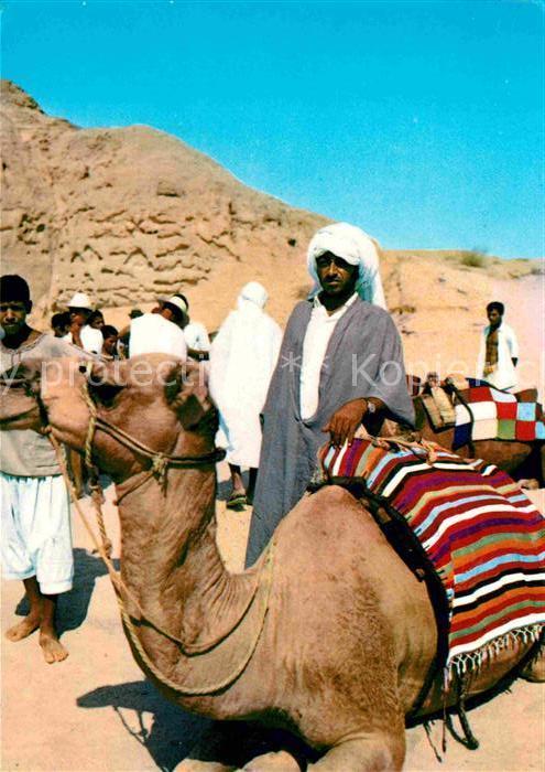 AK / Ansichtskarte Tunesien Kameltreiber Kat. Tunesien