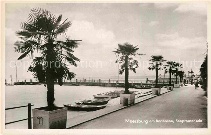 Ak Ansichtskarte Meersburg Bodensee Strandpromenade Kat Meersburg