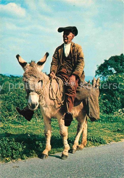 AK / Ansichtskarte Sardegna Tornando a casa con risparmio di carburante Mann auf Esel