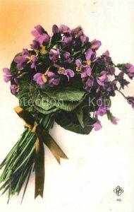 AK / Ansichtskarte Blumen Veilchen  Kat. Pflanzen
