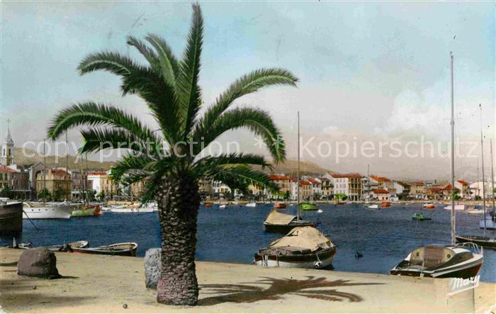 AK / Ansichtskarte Sanary sur Mer Port Kat. Sanary sur Mer