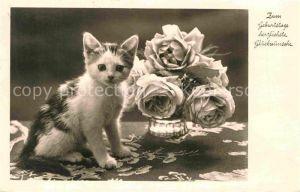 AK / Ansichtskarte Katzen Geburtstag Rosen  Kat. Tiere