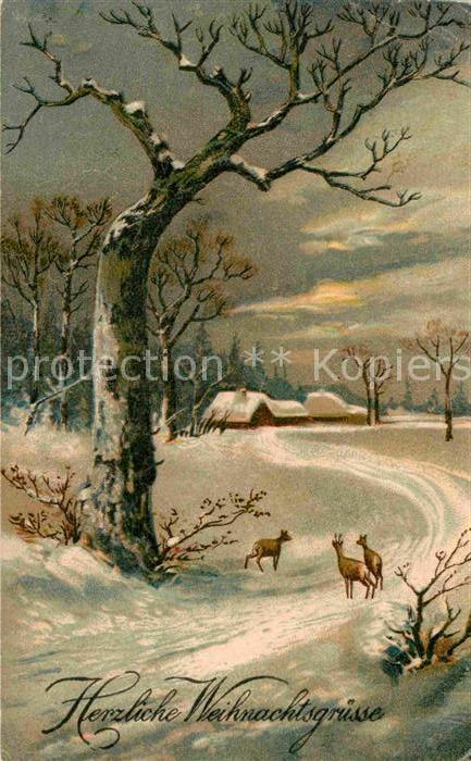 AK / Ansichtskarte Weihnachten Winterlandschaft Rehe  Kat. Greetings