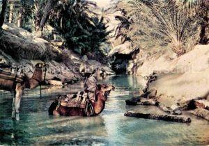 AK / Ansichtskarte Kamele Bis Nefta Oasis  Kat. Tiere