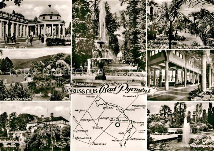 AK / Ansichtskarte Bad Pyrmont Palmengarten Ententeich Schloss Palmengarten Kat. Bad Pyrmont