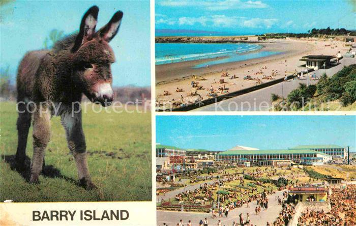 AK / Ansichtskarte Barry The Sands Promenade Esel Kat. Barry