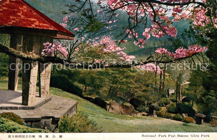 AK / Ansichtskarte Hakone National Park Fuji Hakone Gora Park