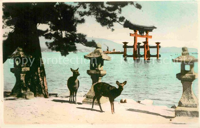 AK / Ansichtskarte Miyajima Temple Gate  Kat. Miyajima