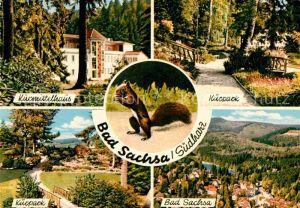 AK / Ansichtskarte Bad Sachsa Harz Kurpark Kurmittelhaus Kurpark  Kat. Bad Sachsa