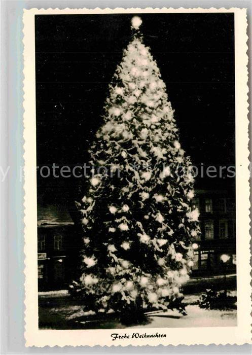 Natur weihnachtsbaum wermelskirchen