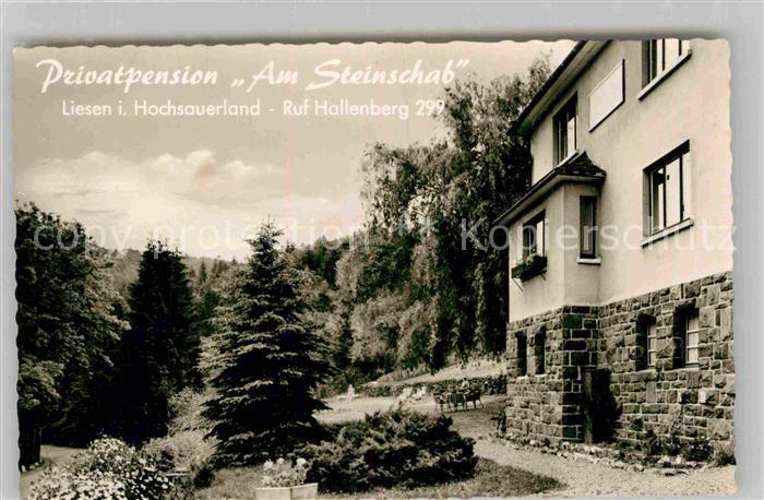 AK / Ansichtskarte Liesen Privatpension Am Steinschab Luftkurort Kat. Hallenberg