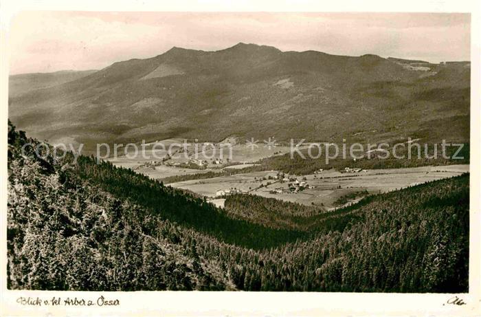 AK / Ansichtskarte Bayerischer Wald Osser Sommerau Lohberg