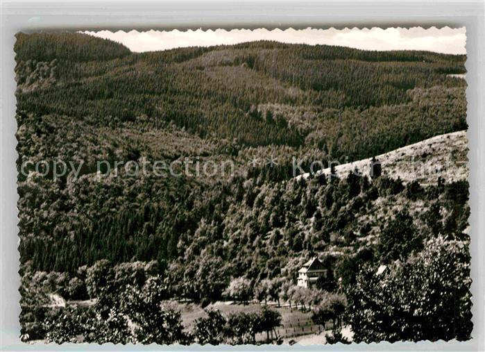 AK / Ansichtskarte Liesen Landschaftspanorama mit Pension Gartencafe Am Steinschab Kat. Hallenberg