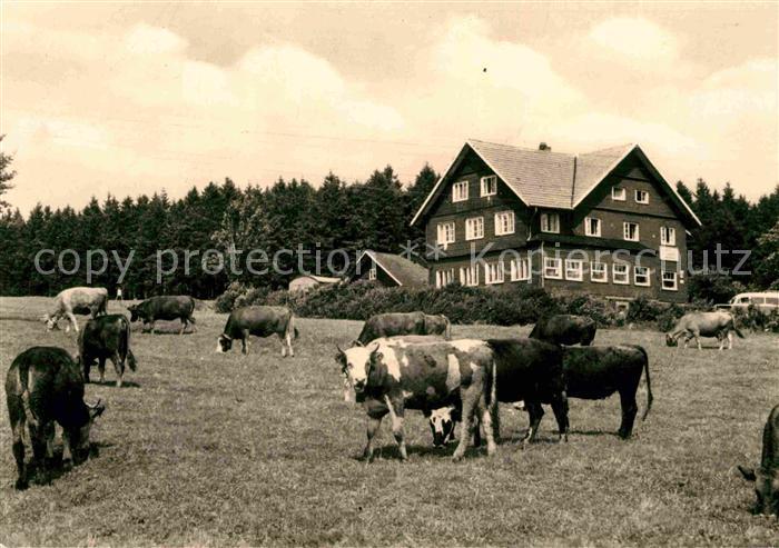 AK / Ansichtskarte Schnellbach Floh Seligenthal Erholungsheim des VEB Minol Kat. Floh Seligenthal
