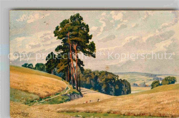 AK / Ansichtskarte Kuenstlerkarte Walter Kopp Landschaft  Kat. Kuenstlerkarte