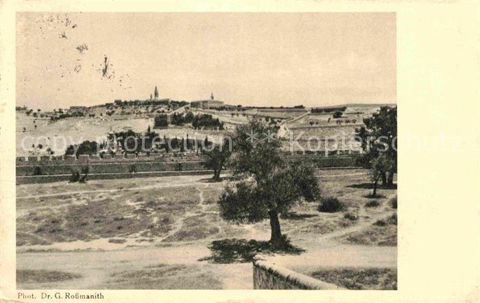 AK / Ansichtskarte Jerusalem Yerushalayim Blick vom Tempelplatz gegen oelberg Kat. Israel