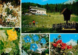 AK / Ansichtskarte Gross Veitsch Alpengasthof Scheikl Edelweiss Almrausch Enzian  Kat. Veitsch