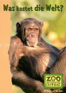 AK / Ansichtskarte Affen Zoo Leipzig  Kat. Tiere