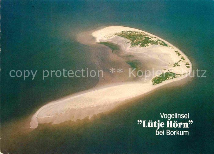 AK / Ansichtskarte Borkum Nordseebad Fliegeraufnahme Vogelinsel Luetje Hoern Kat. Borkum