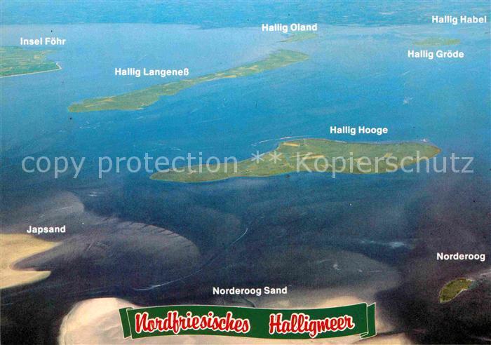 AK / Ansichtskarte Hallig Hooge Nordfriesisches Halligmeer Norderoog und Halligen Kat. Hooge