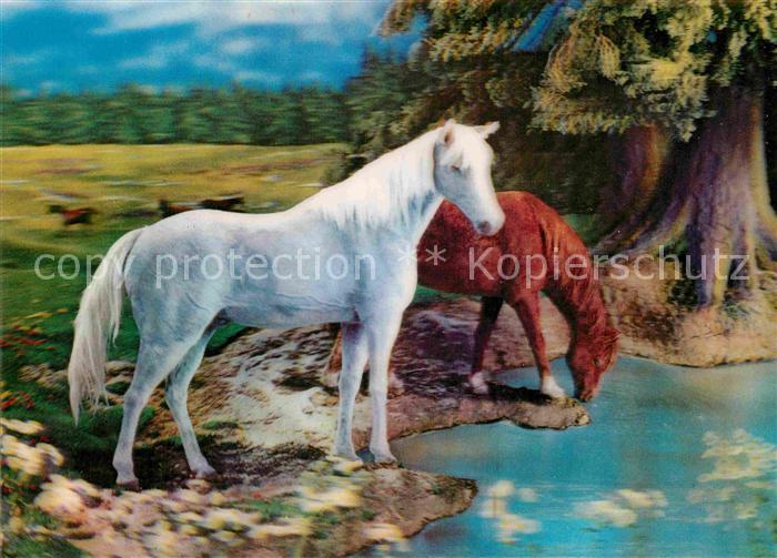 AK / Ansichtskarte Pferde 3D Karte  Kat. Tiere