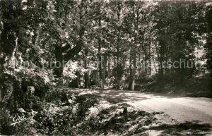 AK / Ansichtskarte Azazga Sous Bois