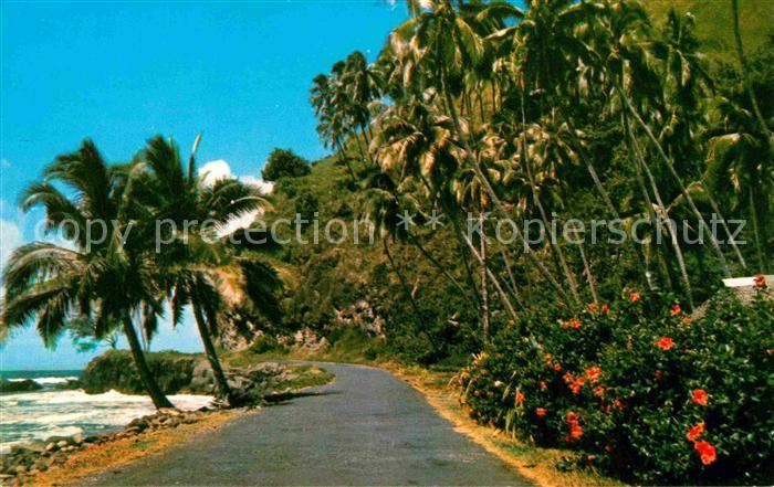 AK / Ansichtskarte Tahiti Polynesien East Coast Road of Tahiti Kat. Ozeanien