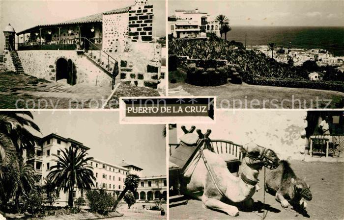 AK / Ansichtskarte Puerto de la Cruz Castillo de San Felipe Gran Hotel Taoro Camellos Kat. Puerto de la Cruz Tenerife