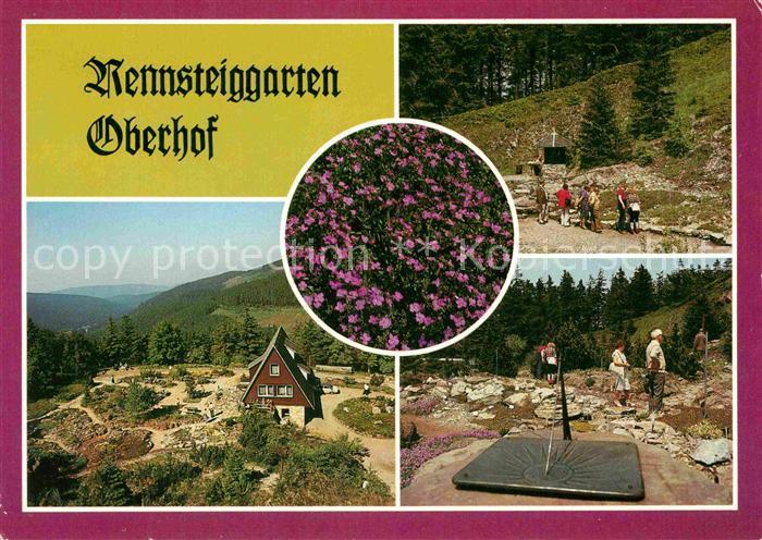 AK / Ansichtskarte Oberhof Thueringen Rennsteiggarten  Kat. Oberhof Thueringen