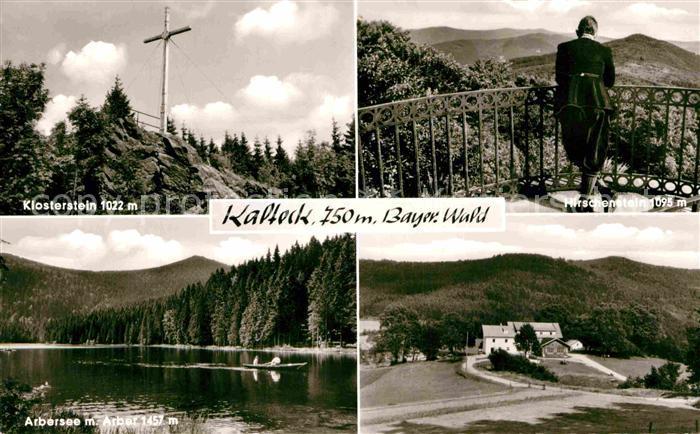 AK / Ansichtskarte Achslach Berggasthaus Kalteck Klosterstein Gipfelkreuz Arbersee Arber Aussichtsplattform Hirschenstein Kat. Achslach