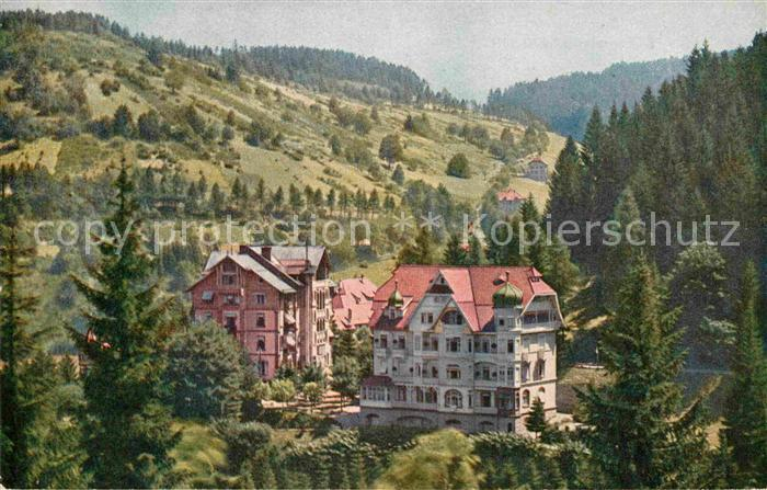 AK / Ansichtskarte Triberg Schwarzwald Schwarzwald Hotel  Kat. Triberg im Schwarzwald