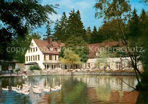 AK / Ansichtskarte Leopoldstal Lippe Waldhotel Pension Silbermuehle Kat. Horn Bad Meinberg