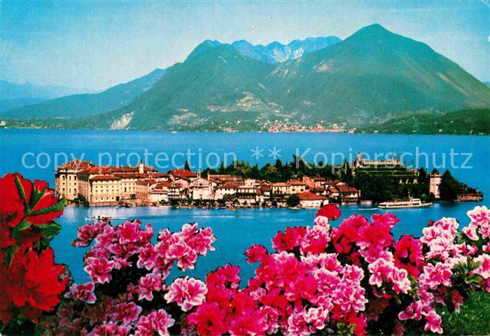 AK / Ansichtskarte Isola Bella Panorama alpen  Panorama Alpen Blumen Kat. Lago Maggiore