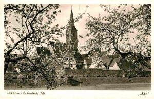 AK / Ansichtskarte Wolframs Eschenbach Baumbluete Stadtmauer Altstadt Kirche Kat. Wolframs Eschenbach