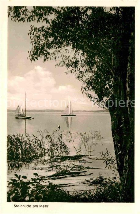 AK / Ansichtskarte Steinhude Meer Uferpartie am Steinhuder Meer